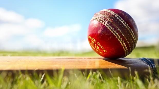 cricket sport